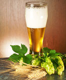 The glass of beer Royalty Free Stock Image
