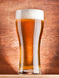 Glass of beer Royalty Free Stock Photo