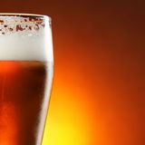 Glass of beer. With froth close-up stock image