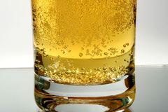 Glass of beer. Alcohol, beer, black, brew, brewed, brewery, bubble, clear, closeup, cold, dark, draught, drink, foam, glass Royalty Free Stock Photography