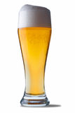 Glass of beer. Fresh glass of beer. The file includes a clipping path Stock Photos