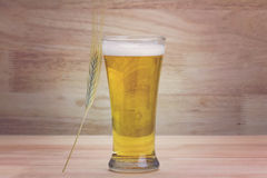 Glass beer and bale Stock Photos