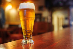 Glass of beer on the bar. Description: One glass of beer on the bar Royalty Free Stock Photos