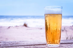 Glass of beer. On the beach Royalty Free Stock Photography