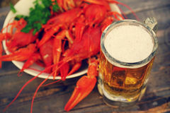 Glass of beer and a boiled crawfishes in a plate Royalty Free Stock Image
