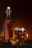 Glass of beer and bottle with hop Stock Photography