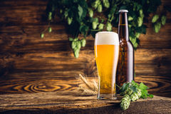 Glass of beer and bottle on old wooden table Stock Images