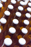 Glass beer bottles with white lids Royalty Free Stock Photo