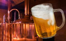 Glass of beer. In the brewery stock images