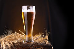 Glass of beer on a chest Royalty Free Stock Image