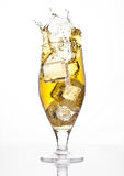 Glass of beer cider with ice cube splash on white Royalty Free Stock Photo