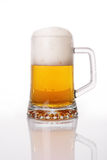Glass of beer close-up Stock Photography