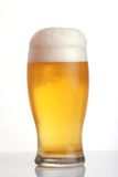 Glass of beer close-up. With froth Royalty Free Stock Photo