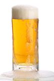 Glass of beer close-up with froth Royalty Free Stock Photography