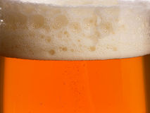 Glass of beer. Close up studio shot Stock Photos