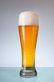 Glass of beer. Royalty Free Stock Image
