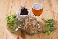 Glass of beer, cones of hop, pale caramel malt in glass mugs and. Chocolate malt in bag, Ingredient in craft beer brewing from grain barley malt. Ale or lager stock photo