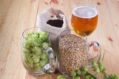Glass of beer, cones of hop, pale caramel malt in glass mugs and. Chocolate malt in bag, Ingredient in craft beer brewing from grain barley malt. Ale or lager stock image