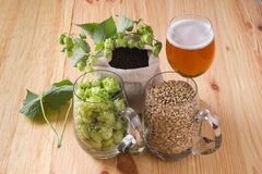 Glass of beer, cones of hop, pale caramel malt in glass mugs and. Chocolate malt in bag, Ingredient in craft beer brewing from grain barley malt. Ale or lager royalty free stock photos