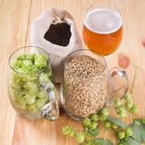 Glass of beer, cones of hop, pale caramel malt in glass mugs and. Chocolate malt in bag, Ingredient in craft beer brewing from grain barley malt. Ale or lager stock images