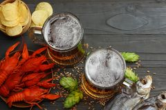Glass beer with crawfish, dried fish and wheat ears on dark wooden background. Beer brewery concept. Beer background. top view. With copy space Royalty Free Stock Photography