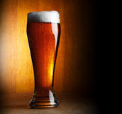 Glass of beer on dark background Stock Images