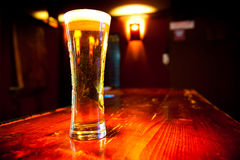 Glass of  beer. Glass of beer on a dark pub Stock Photos