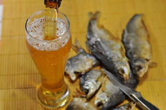 Glass of beer and dried fish. Cranes on the construction of high-rise apartment building Stock Photos