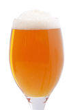 Glass with beer foam Stock Images