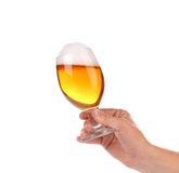 Glass of beer with foam in hand. Stock Image