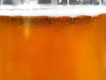 Glass of beer. Glass of beer with foam. Refreshing drink. Close up stock images