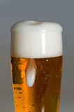 Glass of beer with foam Stock Image