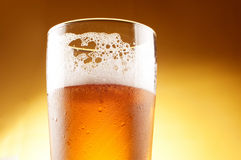 Glass of beer with froth Royalty Free Stock Images