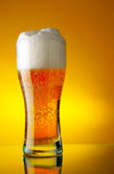 Glass of beer with froth Royalty Free Stock Image