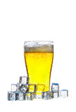 Glass of beer getting cool in ice cubes on white background Stock Photos
