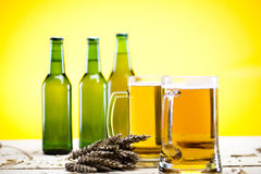 Glass of beer with grain Stock Images