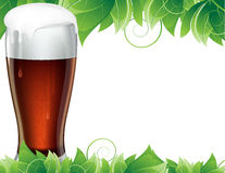 Glass of beer with green leaves Stock Image