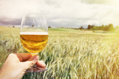 Glass of beer in the hand Stock Images