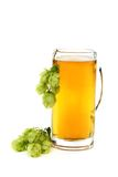Glass with beer and hop cones. Stock Photography