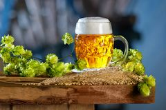 Glass of Beer with Hop Cones Stock Photos