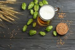 Glass beer with hop cones and wheat ears on dark wooden background. Beer brewery concept. Beer background. top view. With copy space Royalty Free Stock Photos