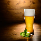 Glass of beer and hop Stock Photos