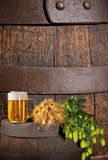Glass of Beer with Hops and Barley Royalty Free Stock Images
