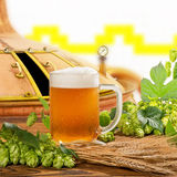 Glass of beer with hops and barley Royalty Free Stock Photos