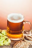Glass of beer Royalty Free Stock Image