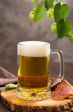 Glass of beer and hops branch Royalty Free Stock Photos