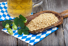 Glass of beer, hops and grains Royalty Free Stock Image