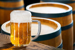 Glass of beer and hops Royalty Free Stock Images