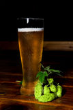 Glass of Beer with Hops Royalty Free Stock Image