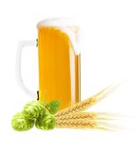 Glass of beer isolated Royalty Free Stock Images